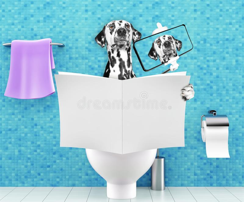 Dog sitting on a toilet seat with digestion problems or constipation reading magazine or newspaper and making selfie. Dog sitting on a toilet seat with digestion stock illustration