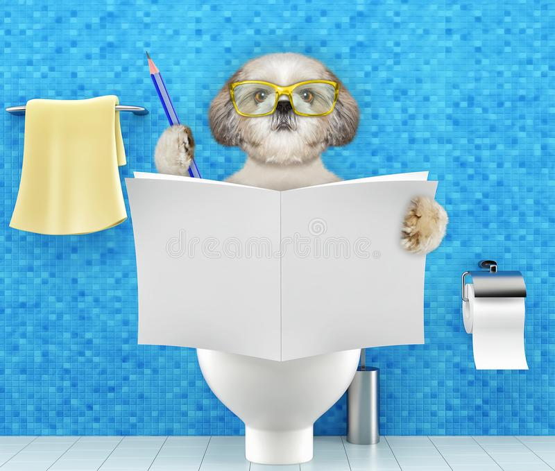 Dog sitting on a toilet seat with digestion problems or constipation reading magazine or newspaper and writing stock illustration