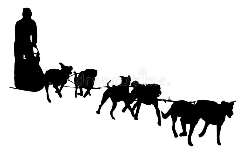 dog sled silhouette on a white background stock