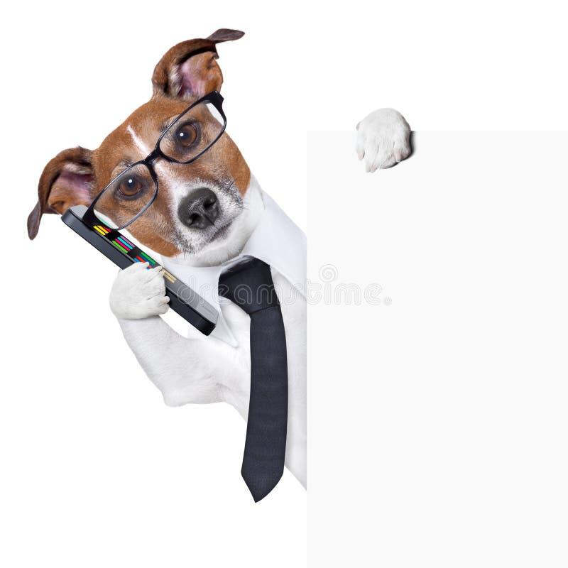 Dog smartphone stock image