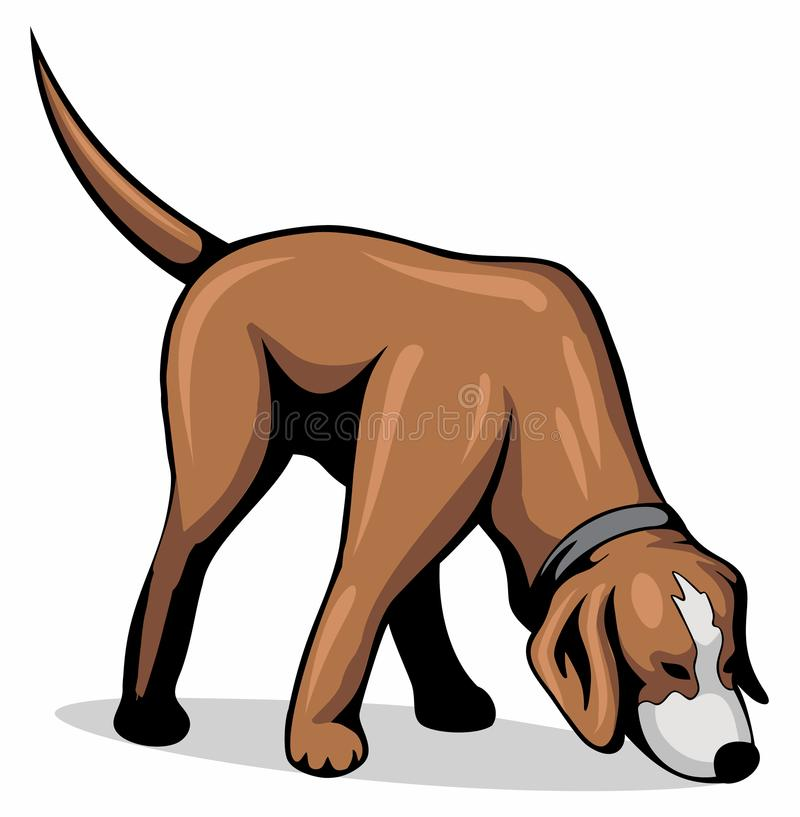 Dog sniff the ground, vector image. Dog sniff the ground, vector image stock illustration