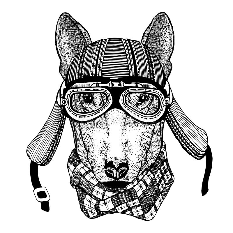 DOG for t-shirt design Wild animal wearing biker motorcycle aviator fly club helmet Illustration for tattoo, emblem stock illustration