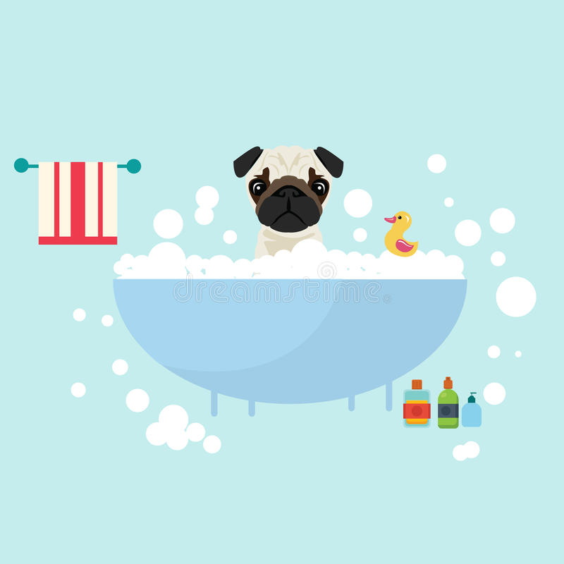 Dog take a bath wet grooming with soap shampoo bubbles animal lover. Vector stock illustration