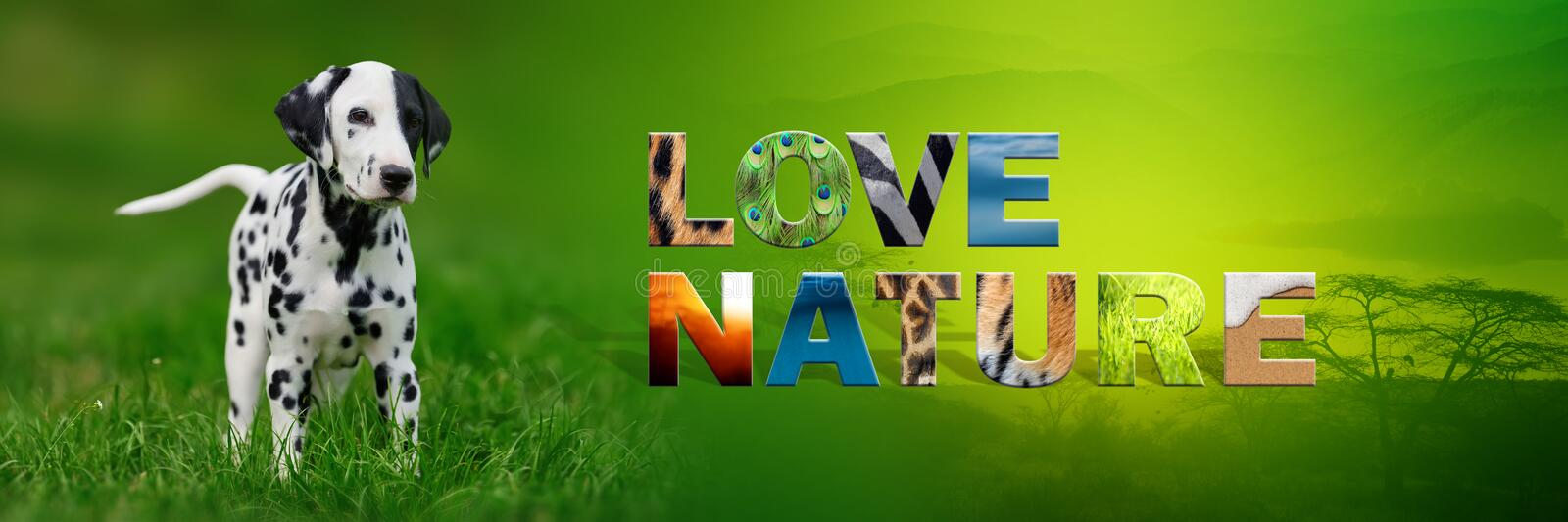 Dog with text Love Nature. Banner with dog and text Love Nature with texture royalty free stock images