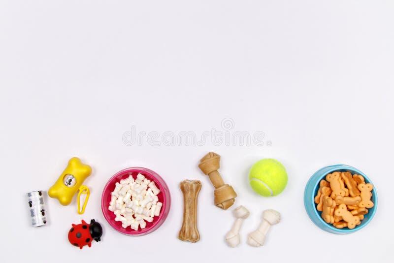 Dog tillbehör, mat och leksaken på vit bakgrund Lekmanna- lägenhet överkant royaltyfria bilder