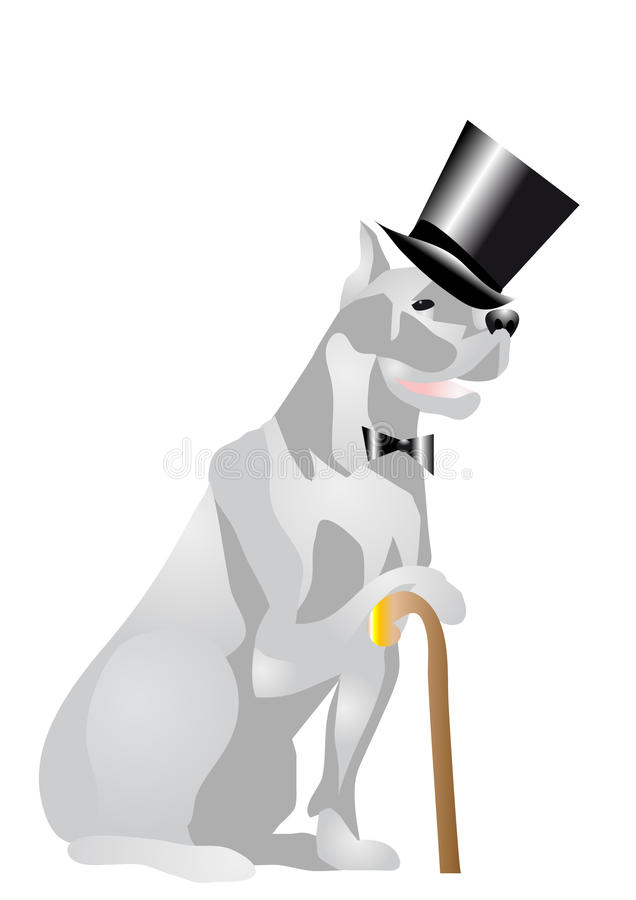 Download Dog in top hat stock photo. Image of pets, animal, concepts - 28902796