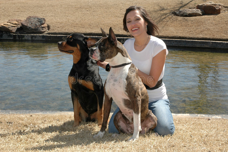 Dog Trainer royalty free stock photo