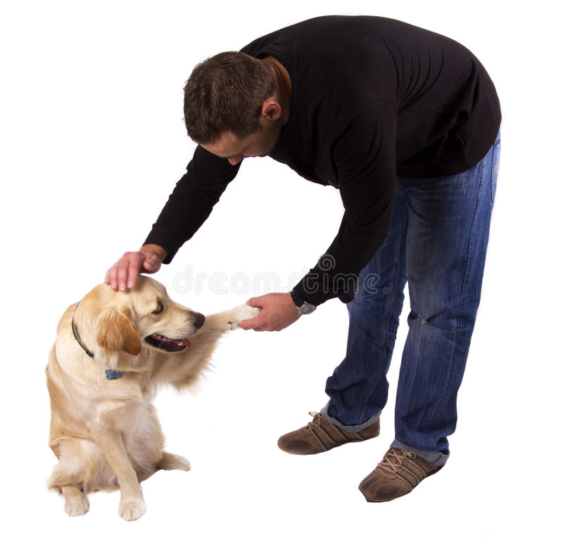 Dog training. Man shaking his dog's paw and patting him on the head stock photos