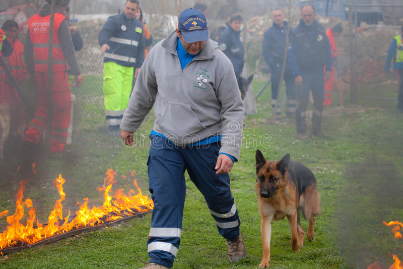 Dog training. TRINO VERCELLESE, ITALY- MARCH 10, 2012: Civil defense during dog handling. Rescue workers trained dogs to walk close to the fire stock photos