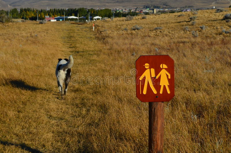 A dog and travelers stock images