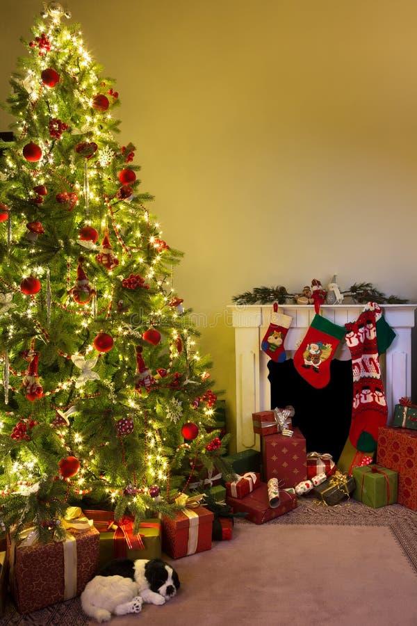 Dog under julträdet arkivfoto