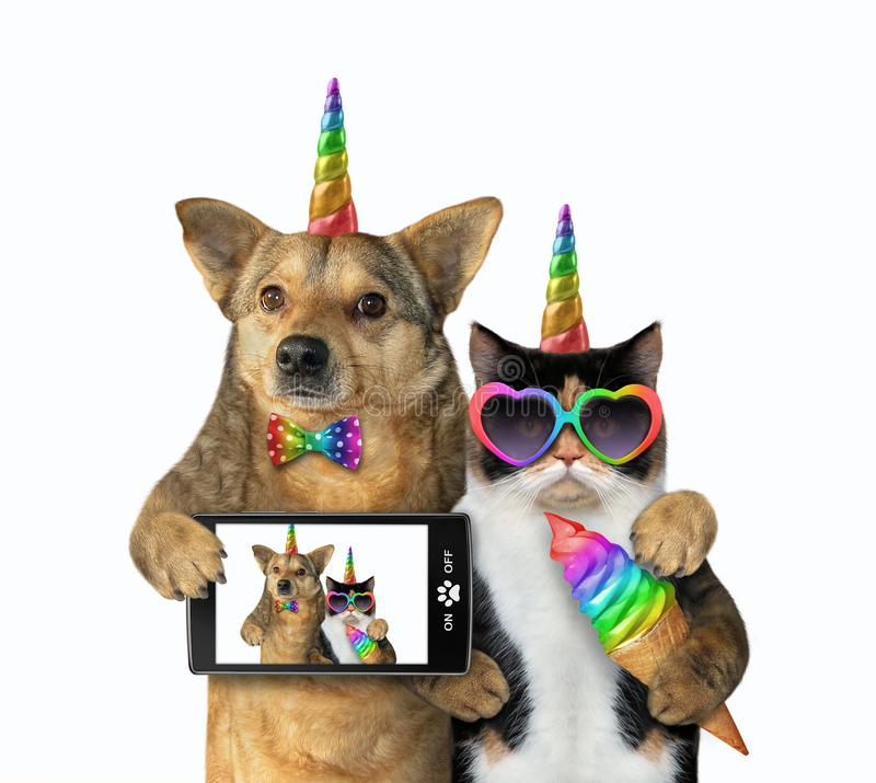 Dog with a cat unicorn made selfie royalty free stock image