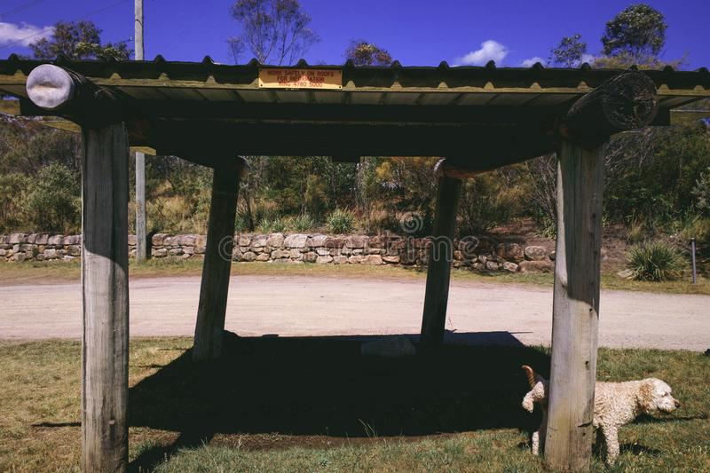 Dog Urinating Against Pole of Wooden Sun Shelter Rest Area royalty free stock photography