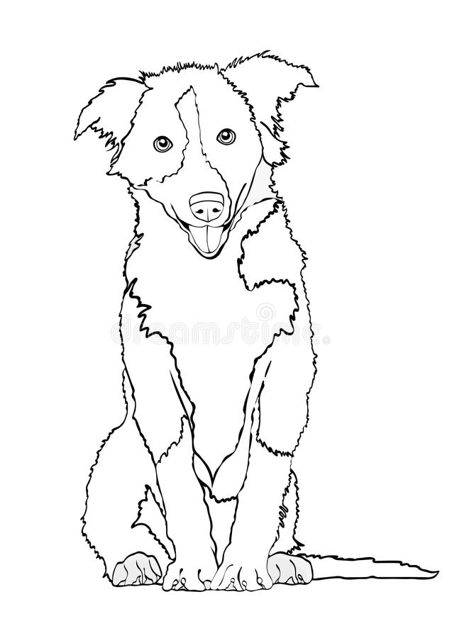 Free Dog Vector Outline Drawing, Sketch, Coloring Book. Black And White Contour Cartoon Shaggy Dog Full-length Isolated On Royalty Free Stock Image - 103447696