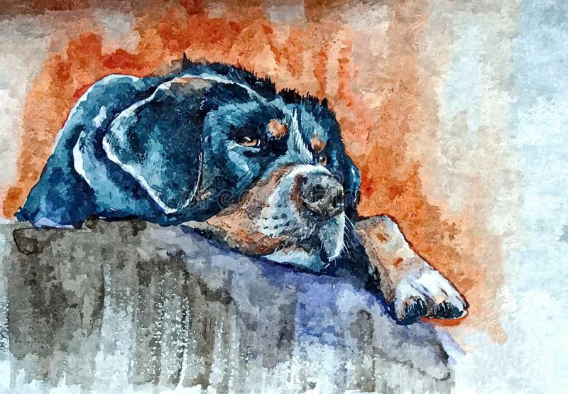 Dog waiting for owner. Portrait. Painting wet watercolor on paper. Naive art. Abstract art. Drawing watercolor on paper. stock illustration