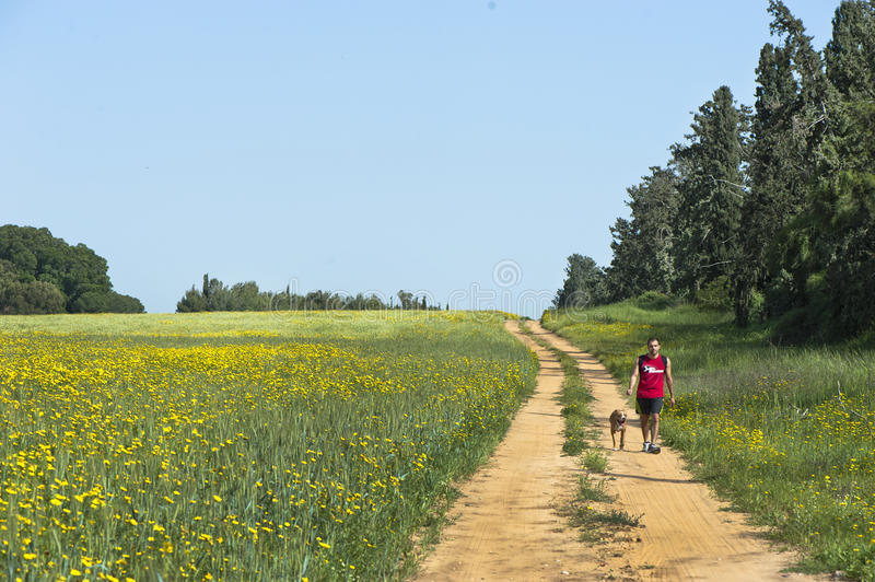 Download Dog-walk In The Countryside Editorial Photo - Image of countryside, walk: 39505711