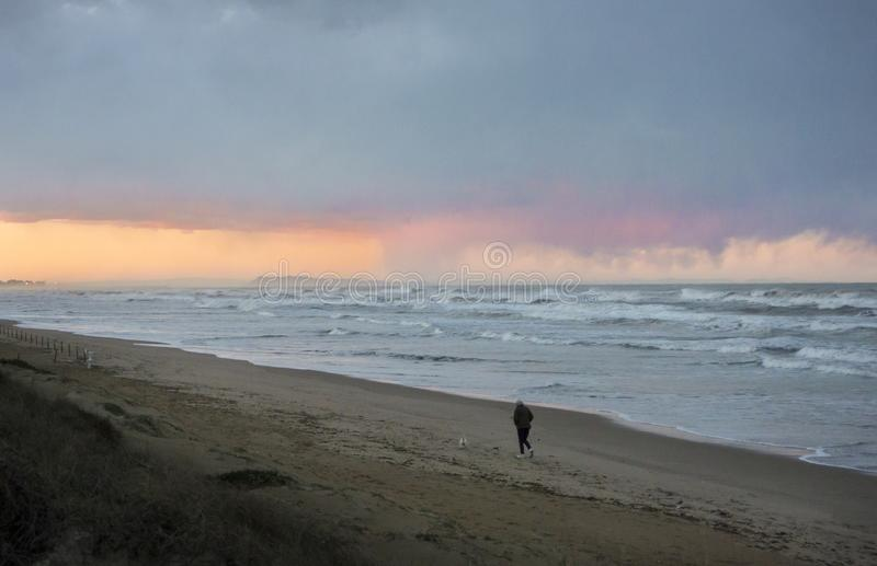 Dog walk on a Stormy Beach royalty free stock images
