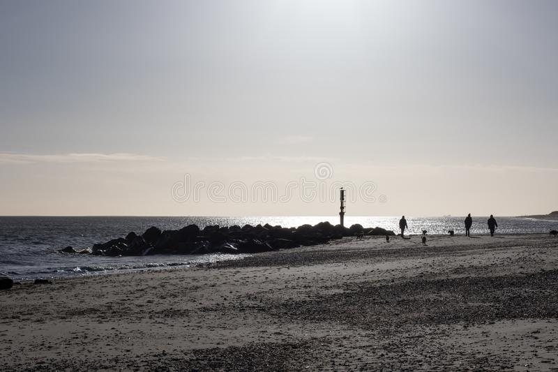 Dog walkers on the beach on a winter morning. Dog walkers on the beach early on a cold winter morning. People and dogs on a walk along the East coast of UK stock photography
