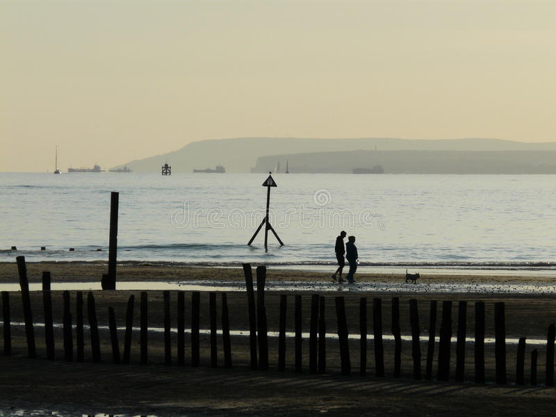 Dog walkers in Sussex. Dog walkers on west wittering beach on the south coast of england with shipping at anchor in the background royalty free stock photo