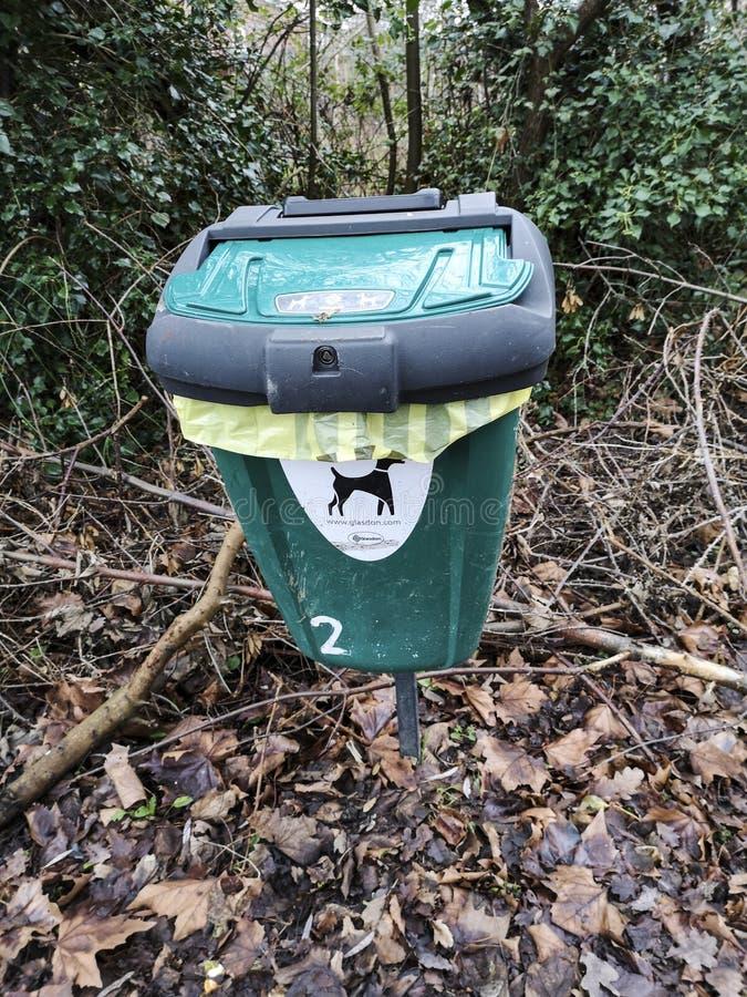 Dog Waste Bin in woodland stock photography
