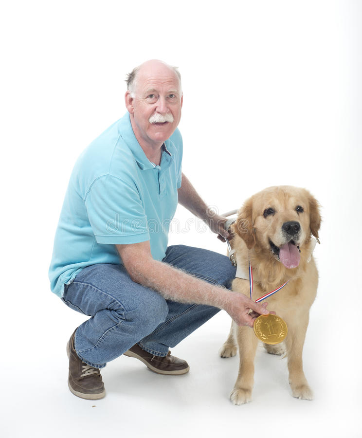 Download Dog won a golden medal stock photo. Image of guide, pedigreed - 32439030