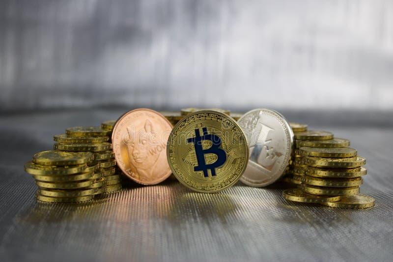 Doge di Cryptocurrency, bitcoin, litecoin immagine stock libera da diritti