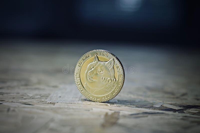 Dogecoin moneta na drewnianym stole zdjęcia stock