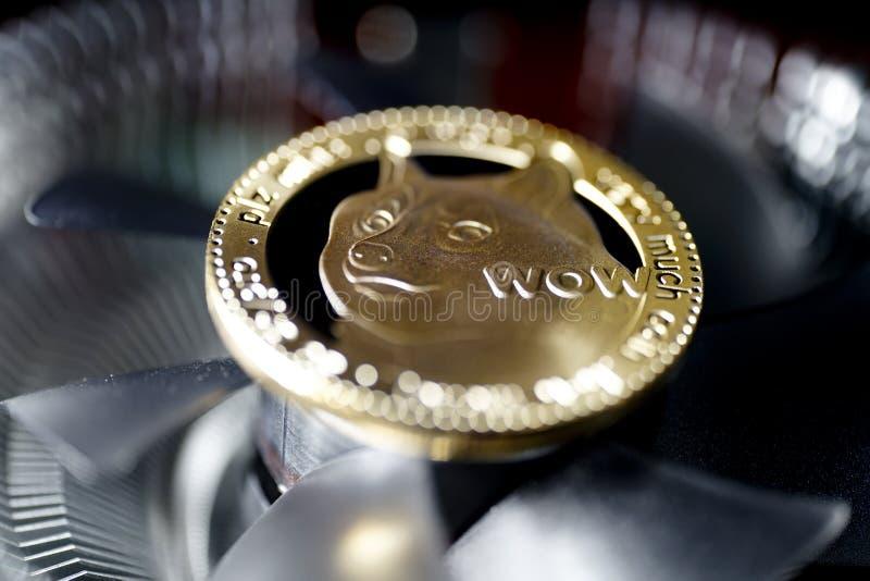 Dogecoin monety obraz stock