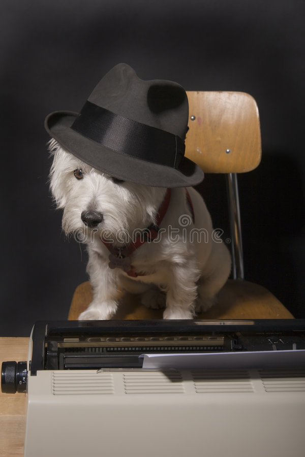 Doggone Deadlines Royalty Free Stock Photography