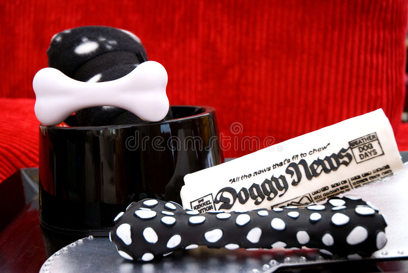 Download Doggy News stock image. Image of news, black, food, toys - 4911345
