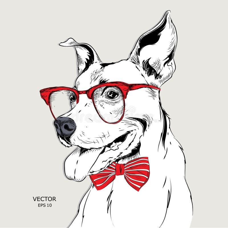 Dogo del retrato de la imagen en el pañuelo y con los vidrios Ilustración del vector ilustración del vector