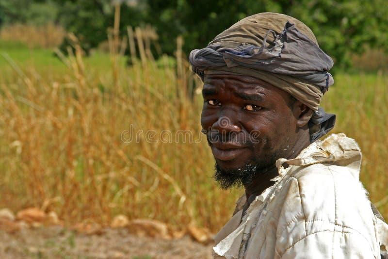 Dogon farmer in Mali stock photography
