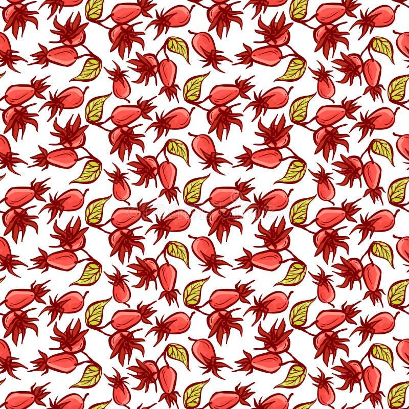 dogrose莓果无缝的样式 与绿色叶子的传染媒介背景狂放的玫瑰色果子