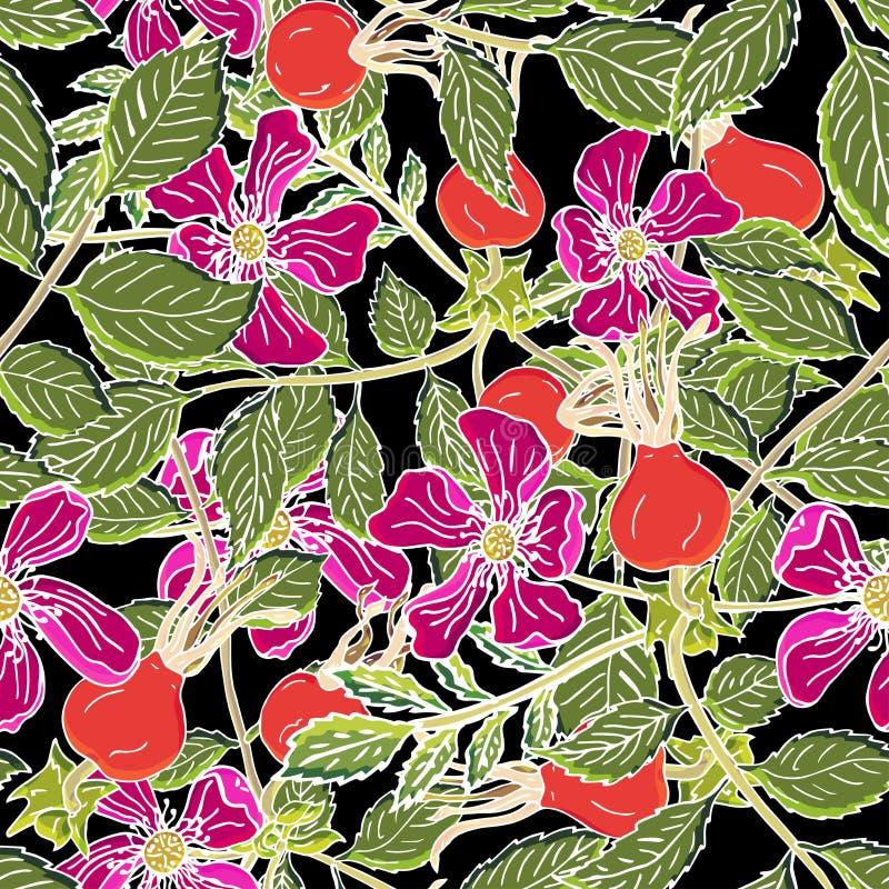 Dogrose莓果无缝的样式 与绿色叶子的传染媒介背景狂放的玫瑰色果子设计的标记糖浆,茶 库存例证