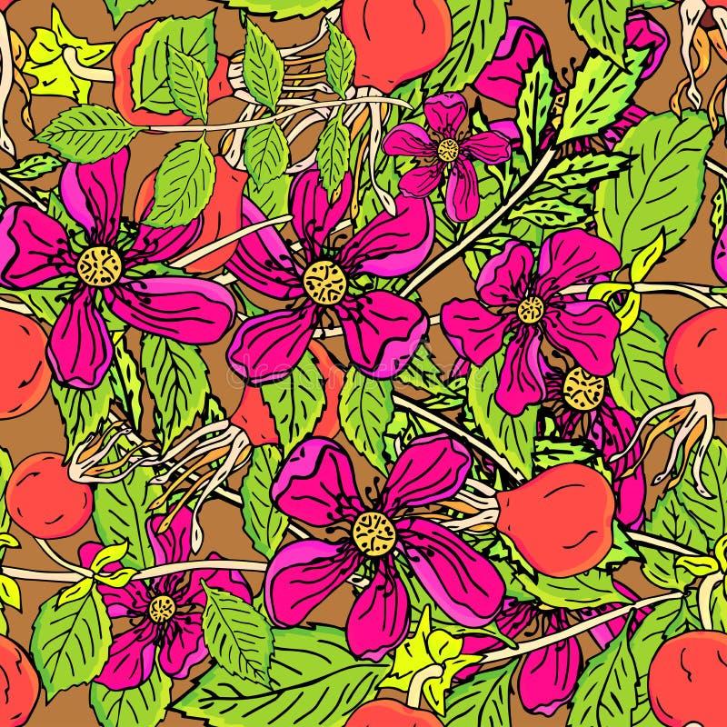 Dogrose莓果无缝的样式 与绿色叶子的传染媒介背景狂放的玫瑰色果子设计的标记糖浆,茶 向量例证