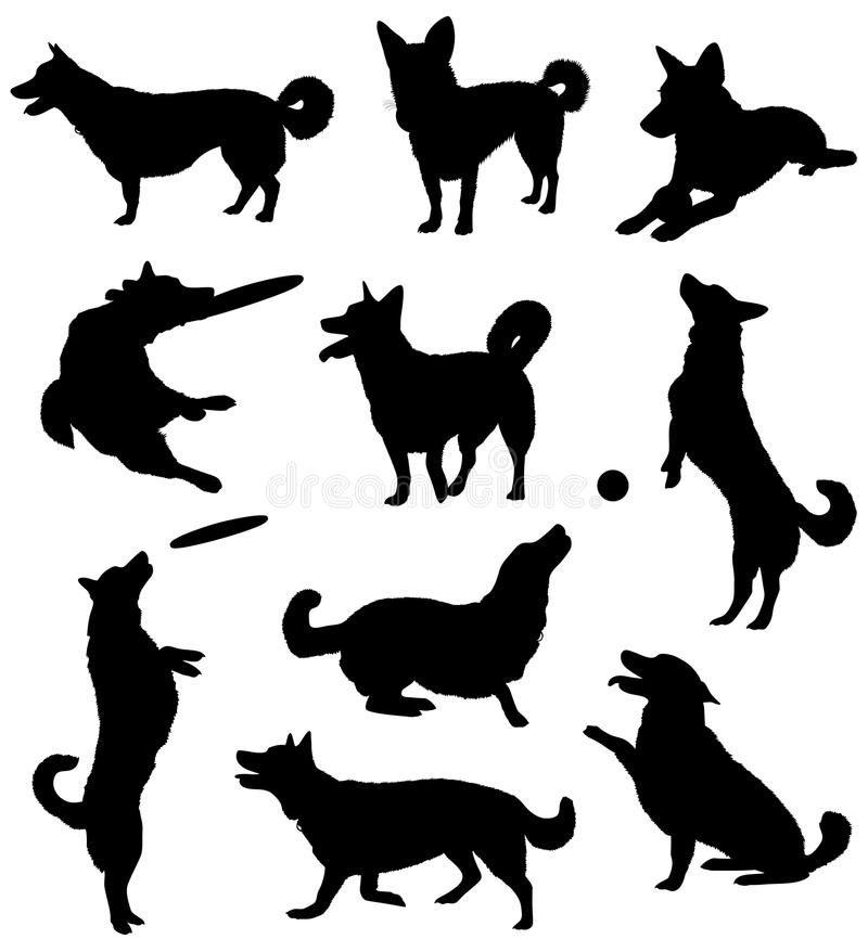 Dogs. Set of silhouettes of a dog