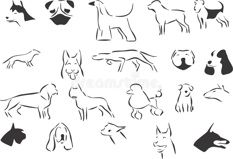 Download Dogs Stock Photo - Image: 7142830