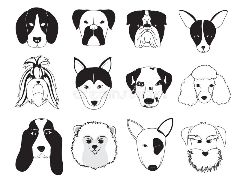 Dogs Breed Collection vector illustration