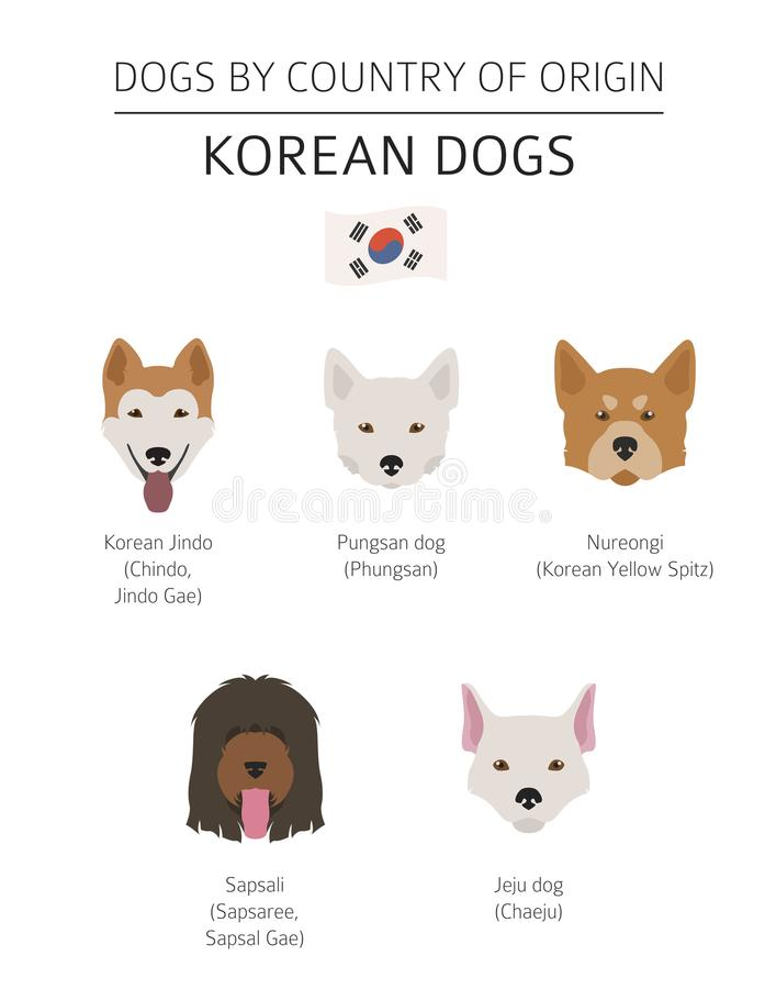Free Dogs By Country Of Origin. Korean Dog Breeds. Infographic Template Stock Photos - 116334783