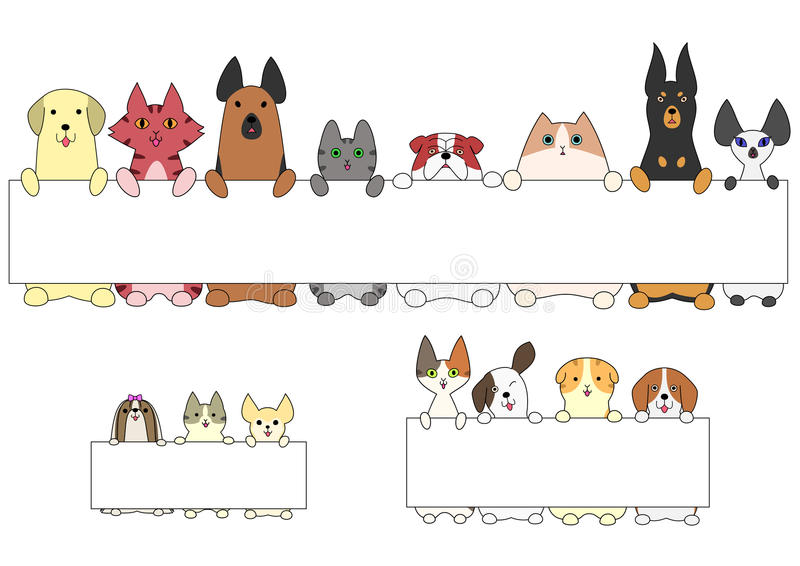 Dogs and cats standing with the card royalty free illustration