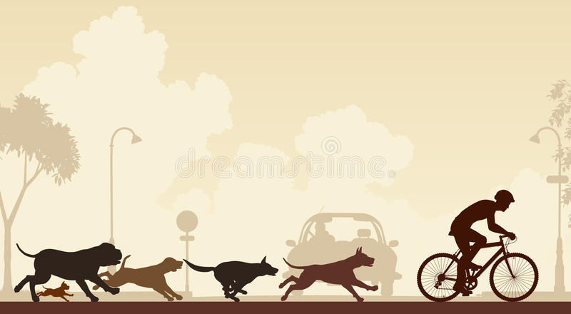 Download Dogs chasing cyclist stock vector. Illustration of nuisance - 31307681