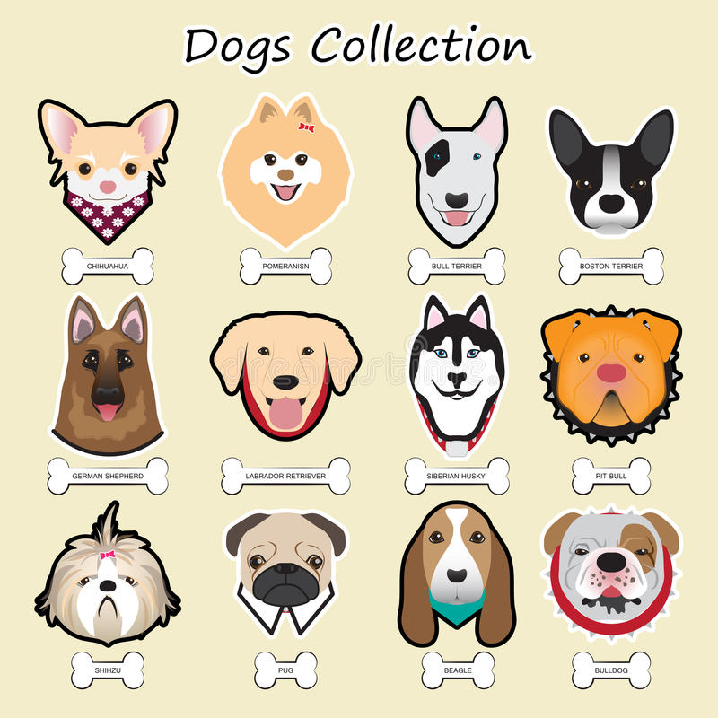 dogs collection, vector royalty free illustration