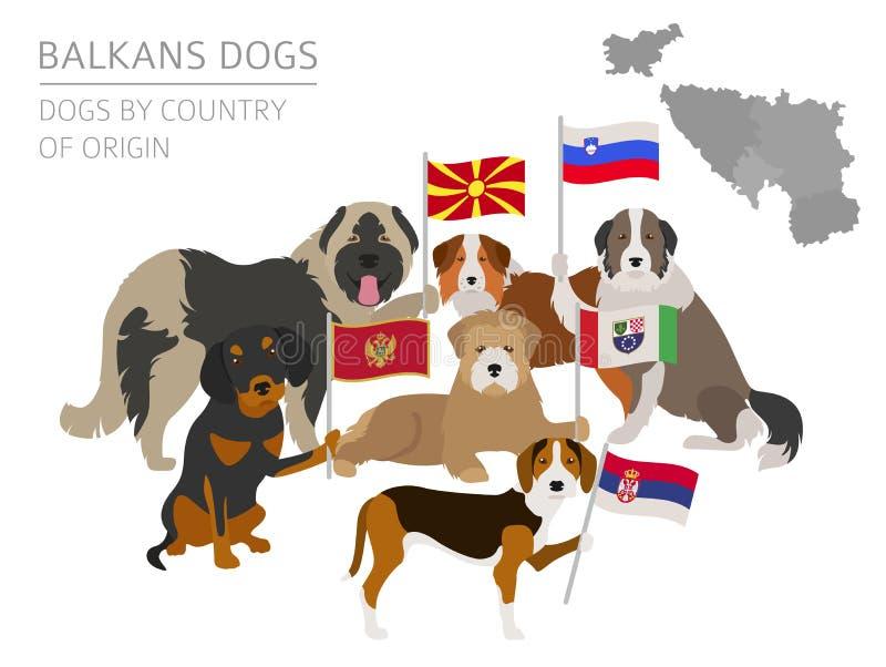 Dogs by country of origin. Balkans dog breeds: Macedonian, Bosnian, Montenegrin, Serbian, Slovenian. Infographic template. Vector illustration stock illustration