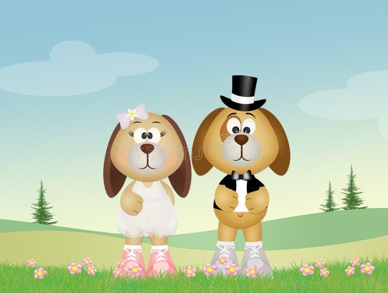 Dogs couple stock illustration