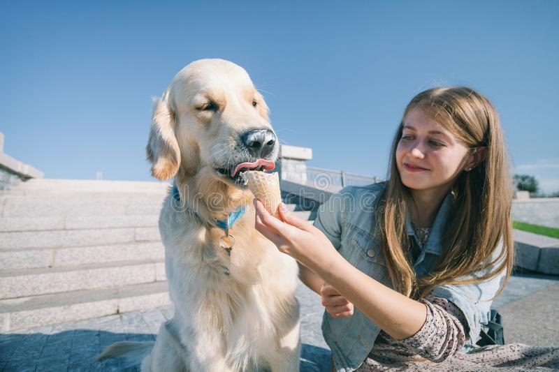 A young girl feeds her dog ice cream in a park on a hot summer day. royalty free stock images