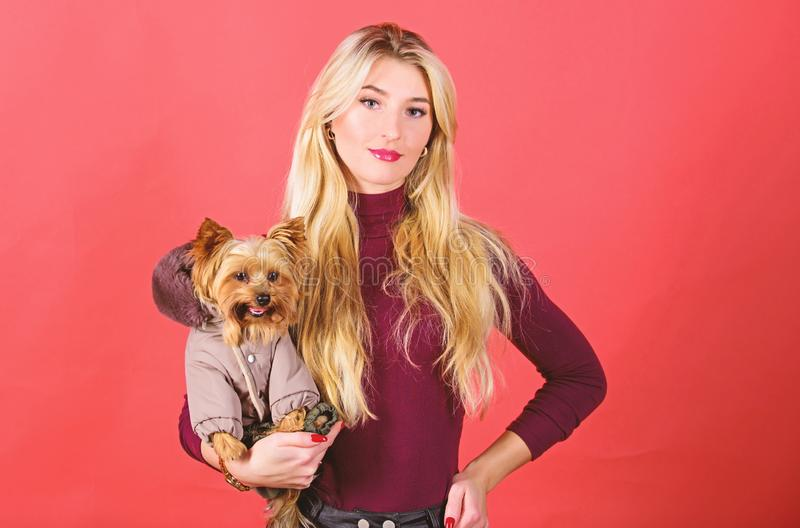Dogs need clothes. Apparel and accessories. Pet supplies. Dressing dog for cold weather. Which dog breeds should wear. Coats. Girl adorable blonde hug little stock photo