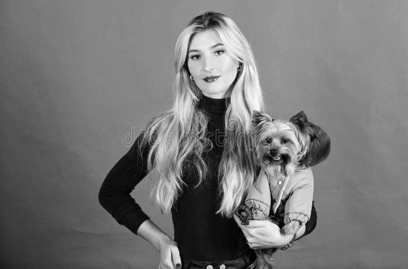 Dogs need clothes. Apparel and accessories. Pet supplies. Dressing dog for cold weather. Which dog breeds should wear. Coats. Girl adorable blonde hug little stock photography