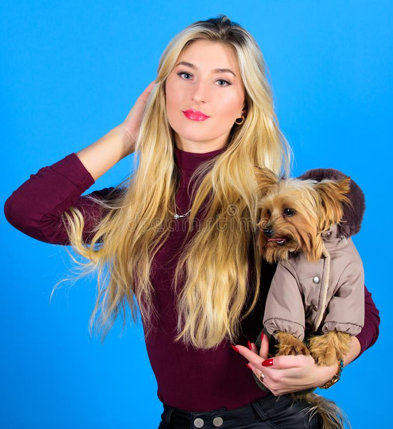 Dogs need clothes. Girl adorable blonde hug little dog in coat. Apparel and accessories. Pet supplies. Dressing dog for. Cold weather. Which dog breeds should royalty free stock photography