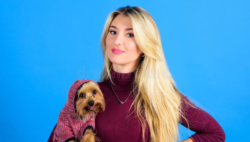 Dogs need clothes. Which dog breeds should wear coats. Woman carry yorkshire terrier. Girl attractive blonde hug cute. Dog. Apparel and accessories. Pet stock image