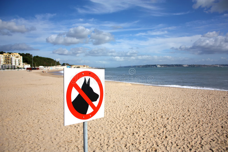 Dogs not allowed. A sign on a beach meaning dogs are not allowed royalty free stock photo
